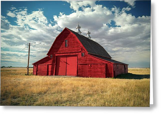 Big Red Greeting Card by Todd Klassy