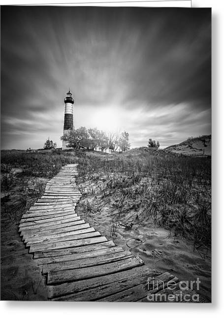 Big Sable Black And White Greeting Card by Todd Bielby