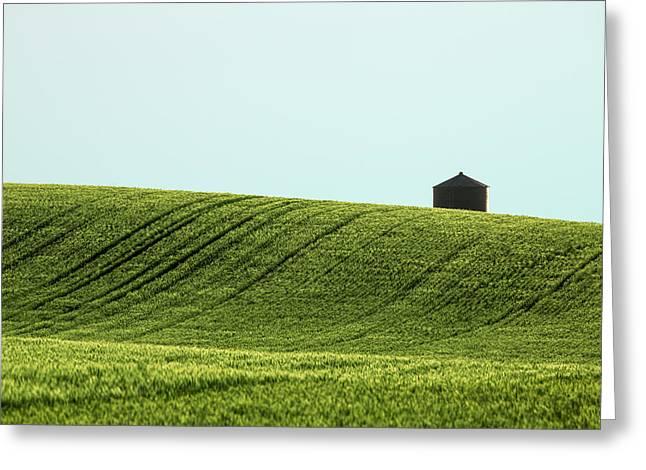 Big Sag Wheat Greeting Card by Todd Klassy