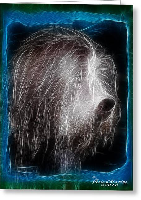 Greeting Card featuring the photograph Big Shaggy Dog by EricaMaxine  Price