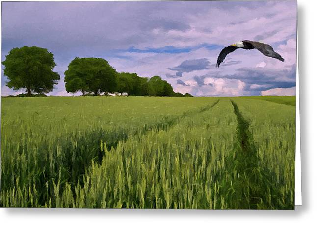 Greeting Card featuring the photograph Big Sky by David Dehner