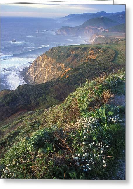 Big Sur Greeting Cards - Big Sur Coast Vista Greeting Card by John Burk