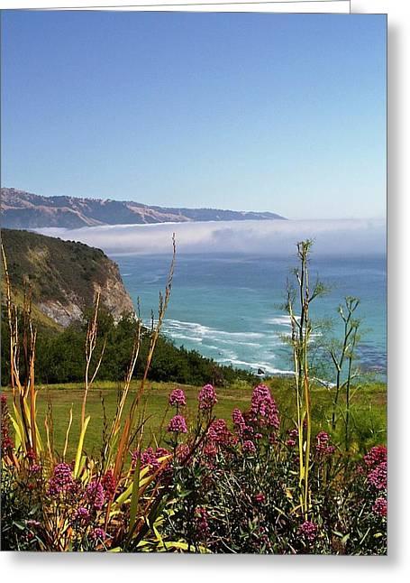 Big Sur II Greeting Card by Richard L Gordon