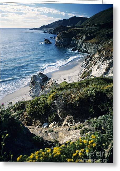 Big Sur Landscape Greeting Card by Allan Seiden - Printscapes
