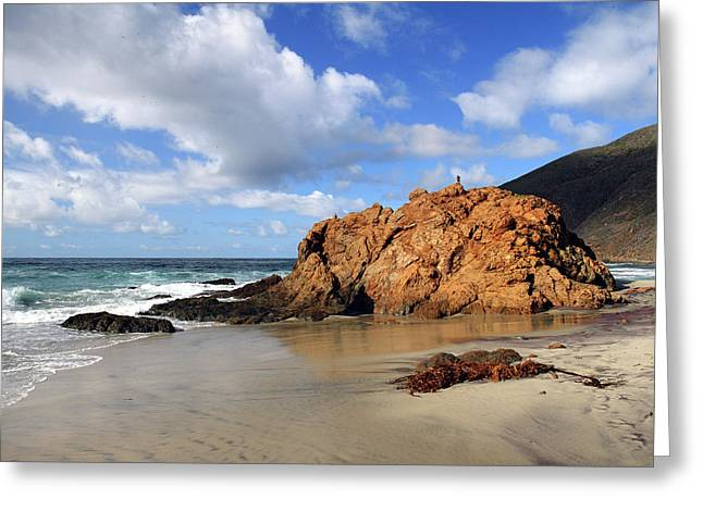 Big Sur California Greeting Cards - Big Sur landscape Greeting Card by Pierre Leclerc Photography