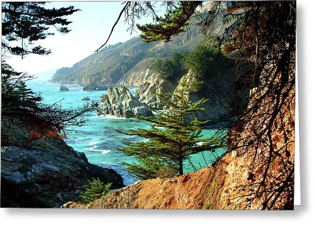 Big Sur Greeting Cards - Big Sur Vista Greeting Card by Charlene Mitchell
