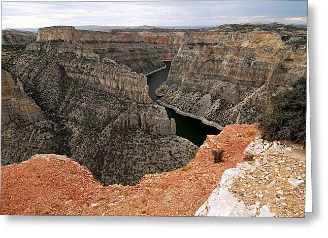 Bighorn Canyon Greeting Card by Larry Ricker