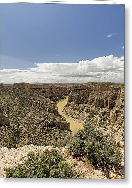 Bighorn River At Devil's Canyon Greeting Card by Niala Branson
