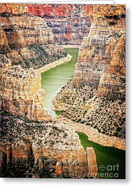 Greeting Card featuring the photograph Bighorn River by Scott Kemper
