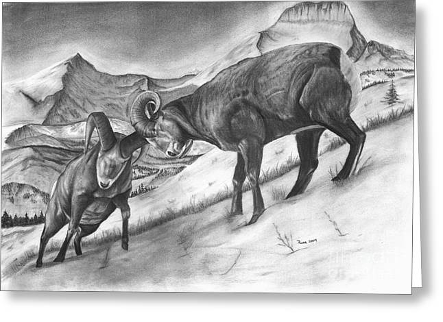 Bighorn Sheep The Battle For Supremacy Greeting Card by Russ  Smith