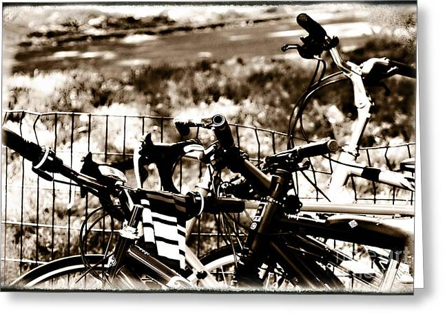 Bike Against The Fence Greeting Card by Madeline Ellis