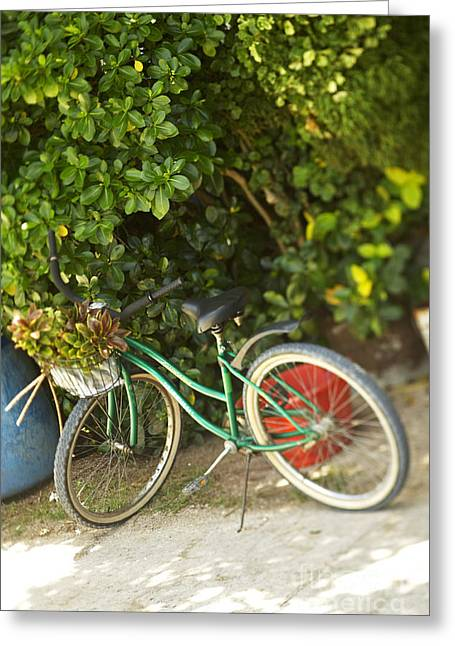 Bike In Maupiti Greeting Card by Kyle Rothenborg - Printscapes