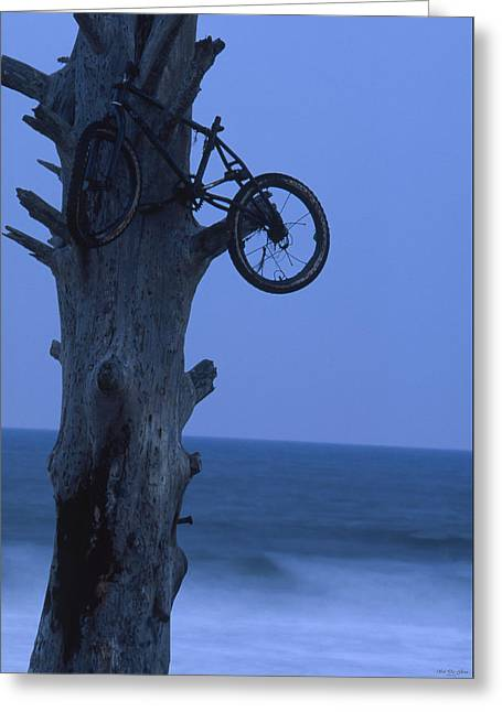 Bike Rack - Seaside Wilderness Park Greeting Card by Soli Deo Gloria Wilderness And Wildlife Photography