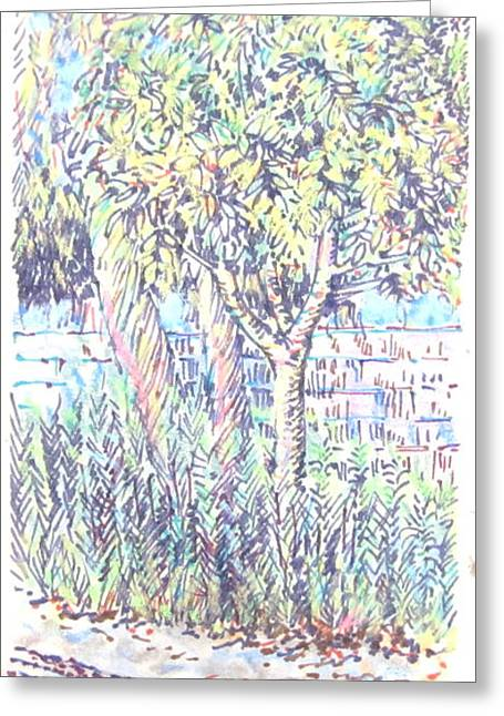 Bike Trail At Katella Greeting Card by Radical Reconstruction Fine Art Featuring Nancy Wood