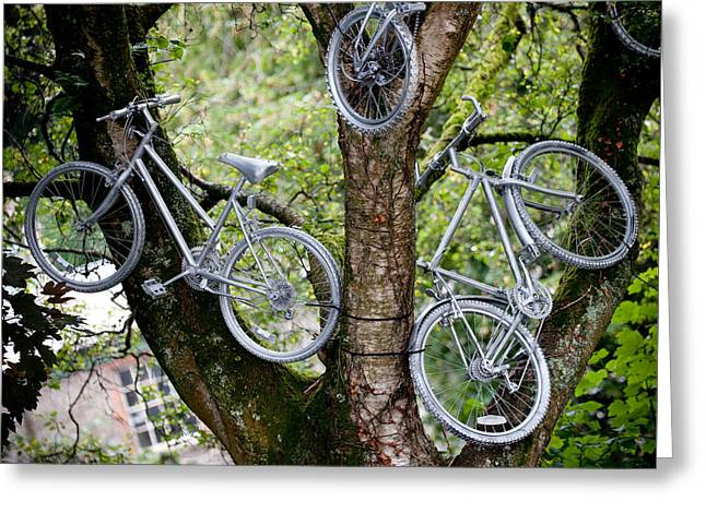 Bikes In A Tree Greeting Card