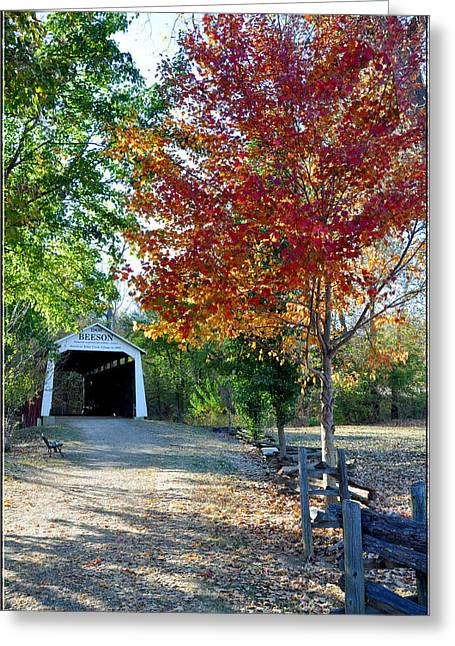 Billie Creek  Greeting Card by Brittany H