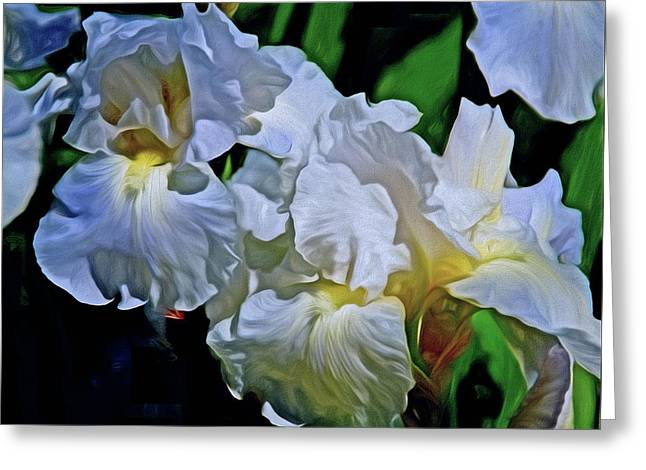 Greeting Card featuring the mixed media Billowing White Irises by Lynda Lehmann