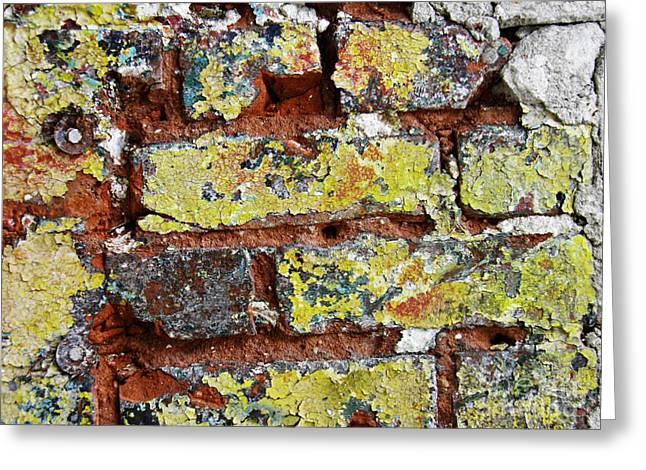 Biography Of A Wall 7 Greeting Card by Sarah Loft