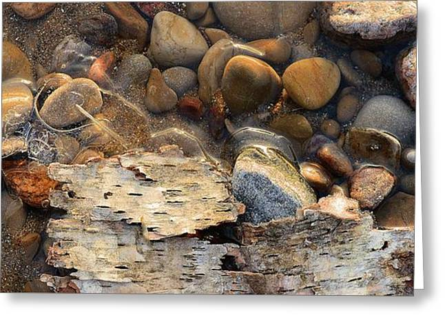 Birch Bark And Ice In The Creek Four  Greeting Card