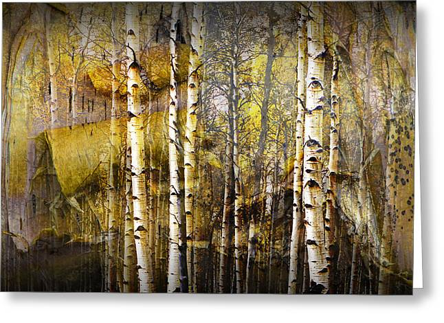 Birch Bark And Trees Abstract Greeting Card