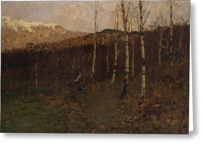 Birch Forest Greeting Card by Bartolomeo Bezzi