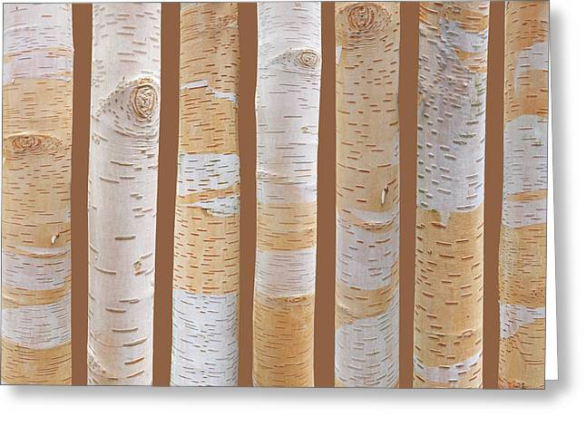 Birch Tree Abstract On Brown Greeting Card