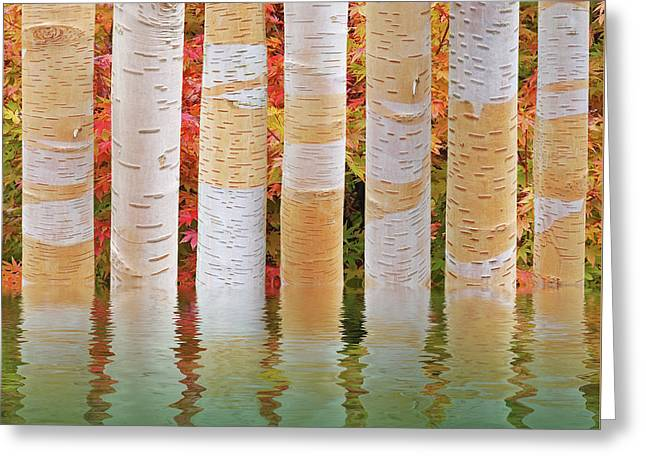 Birch Tree Autumn Abstract Reflections Greeting Card by Gill Billington