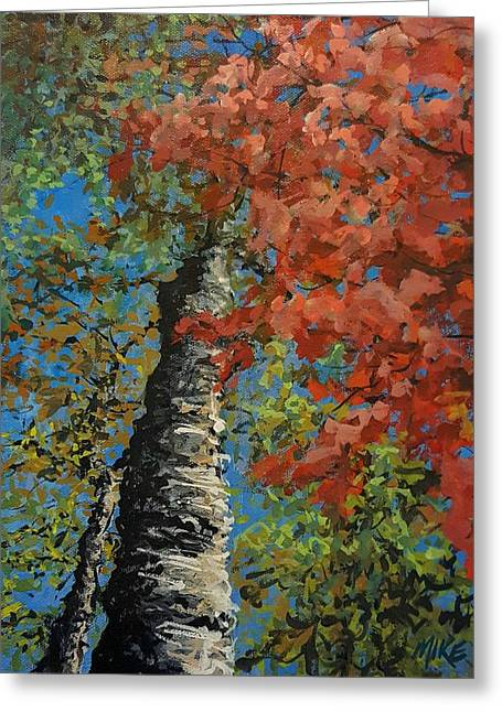 Birch Tree - Minister's Island Greeting Card