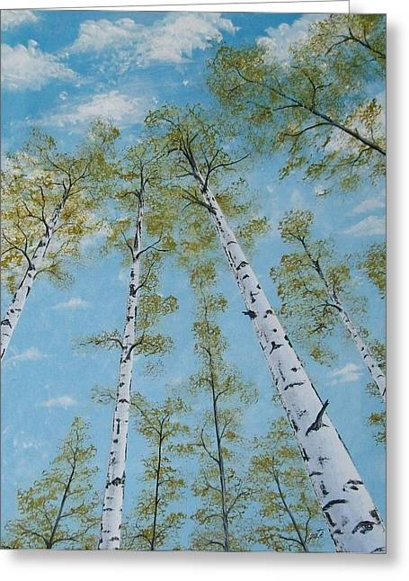 Birch Trees And Sky Greeting Card