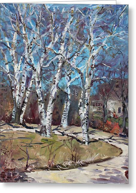 Birch Trees Next Door Greeting Card by Ylli Haruni