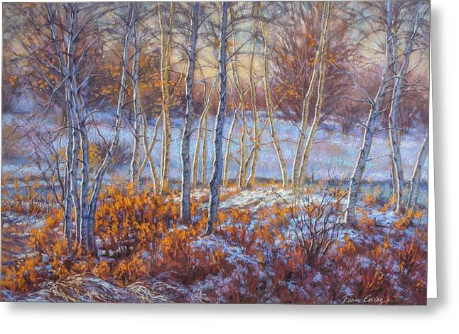 Birches In First Snow Greeting Card by Fiona Craig
