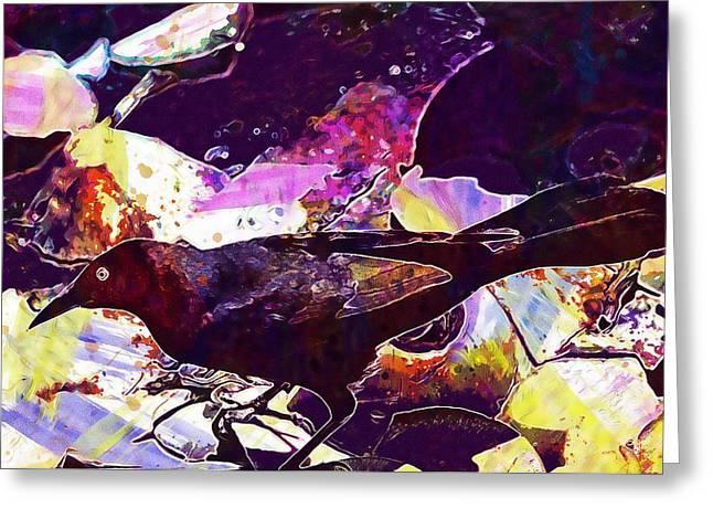 Bird Black Troepiaal Cuba Cuban  Greeting Card