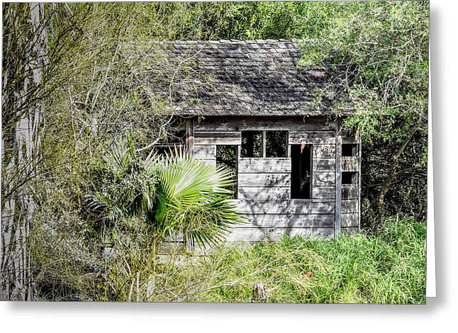 Bird Blind At Frontera Audubon Greeting Card