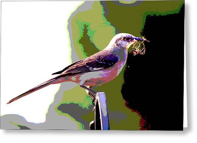 Bird Building A Nest Greeting Card