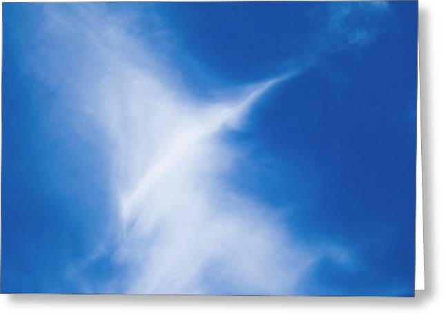 Greeting Card featuring the photograph Bird Cloud by Yulia Kazansky