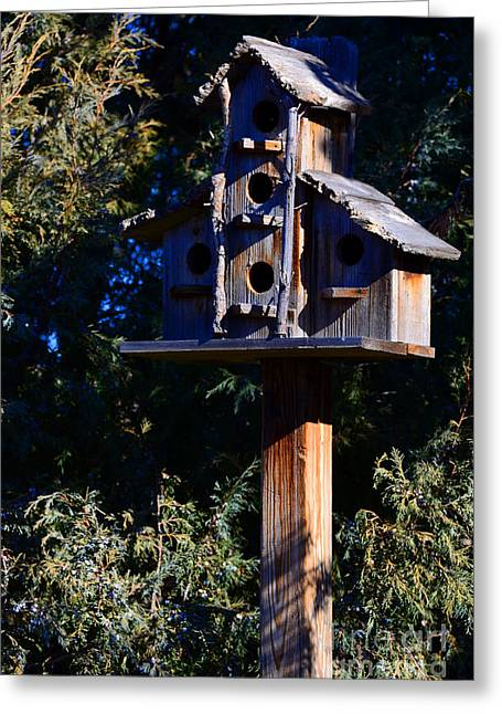 Bird Condos Greeting Card