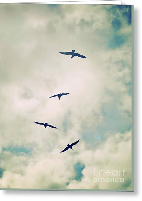 Greeting Card featuring the photograph Bird Dance by Lyn Randle