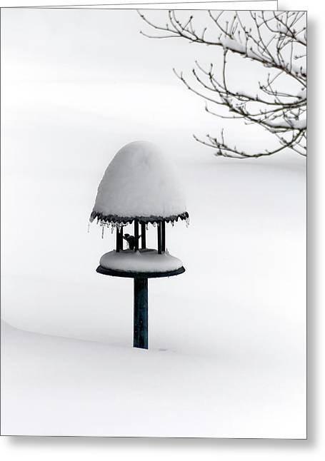 Bird Feeder In Snow Greeting Card