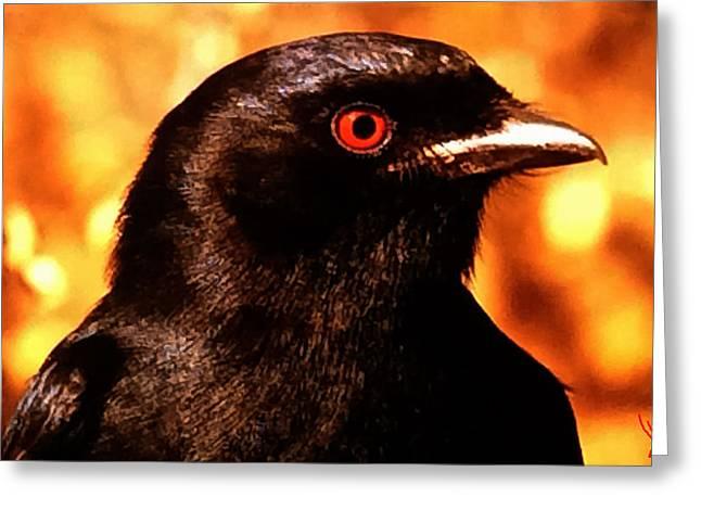 Bird Friend  Greeting Card