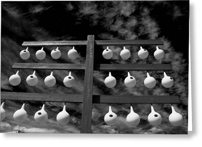Bird Houses In Black And White Greeting Card