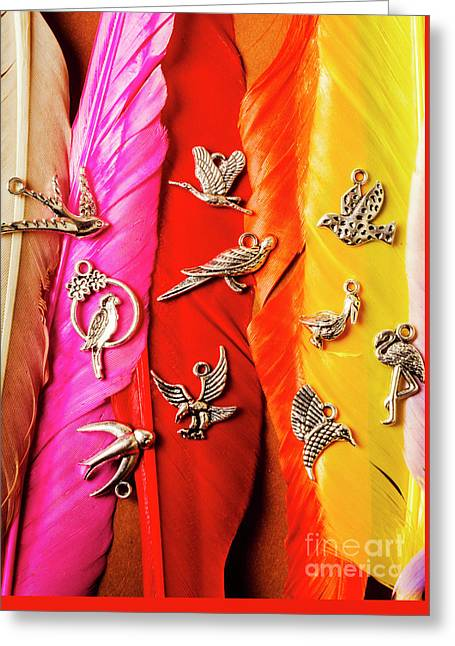Bird Icons And Rainbow Feathers Greeting Card