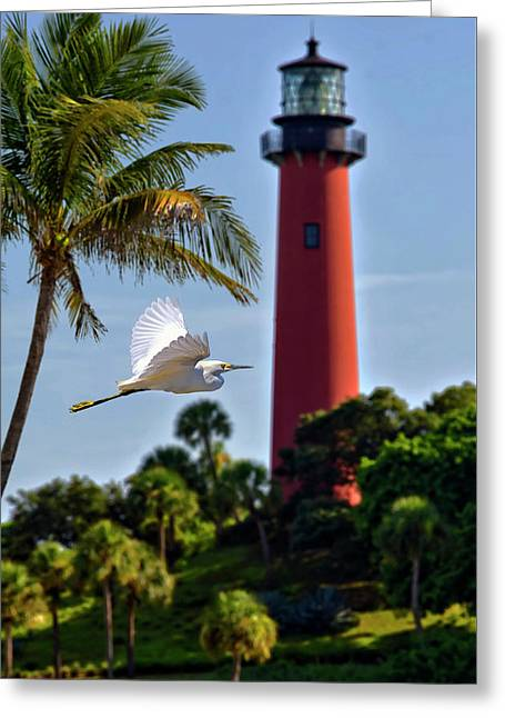 Bird In Flight Under Jupiter Lighthouse, Florida Greeting Card by Justin Kelefas