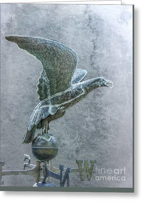Bird In Flight Weathervane Greeting Card