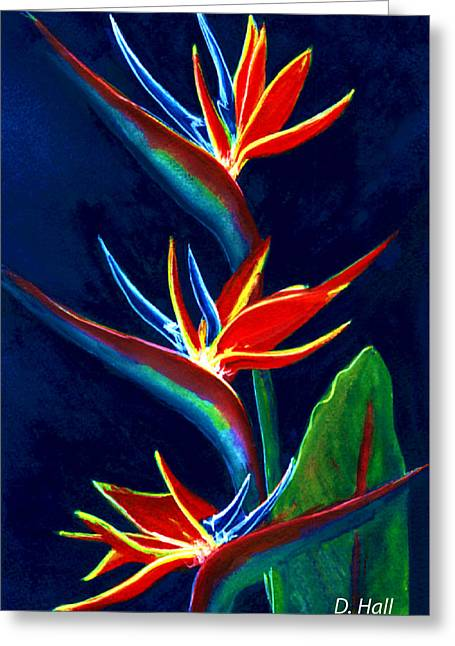 Bird Of Paradise #161 Greeting Card by Donald k Hall