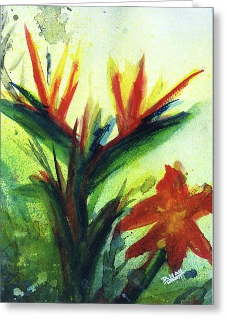 Bird Of Paradise, #177 Greeting Card by Donald k Hall