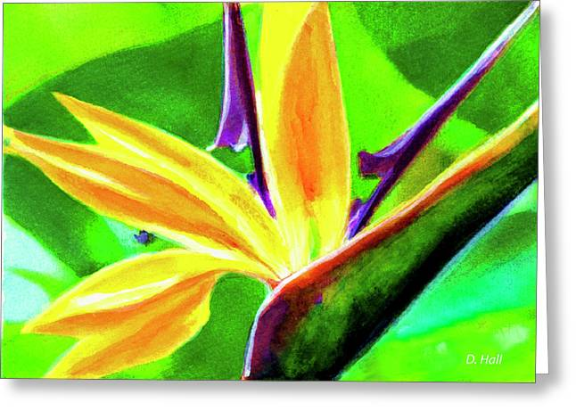 Bird Of Paradise #262 Greeting Card by Donald k Hall