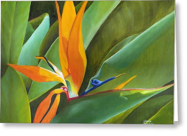 Bird Of Paradise Greeting Card