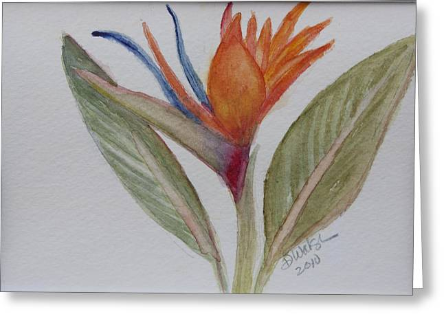 Greeting Card featuring the painting Bird Of Paradise by Donna Walsh