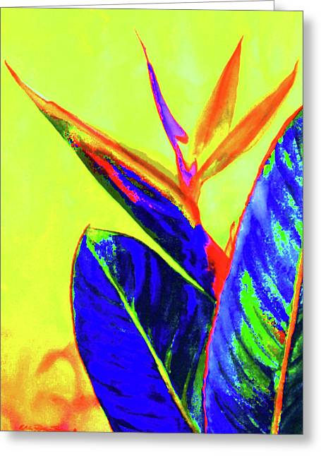 Bird Of Paradise Greeting Card by Estela Robles