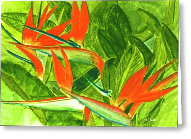 Bird Of Paradise Flower #55 Greeting Card by Donald k Hall